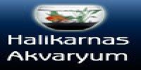 Halikarnas Akvaryum - Firmabak.com